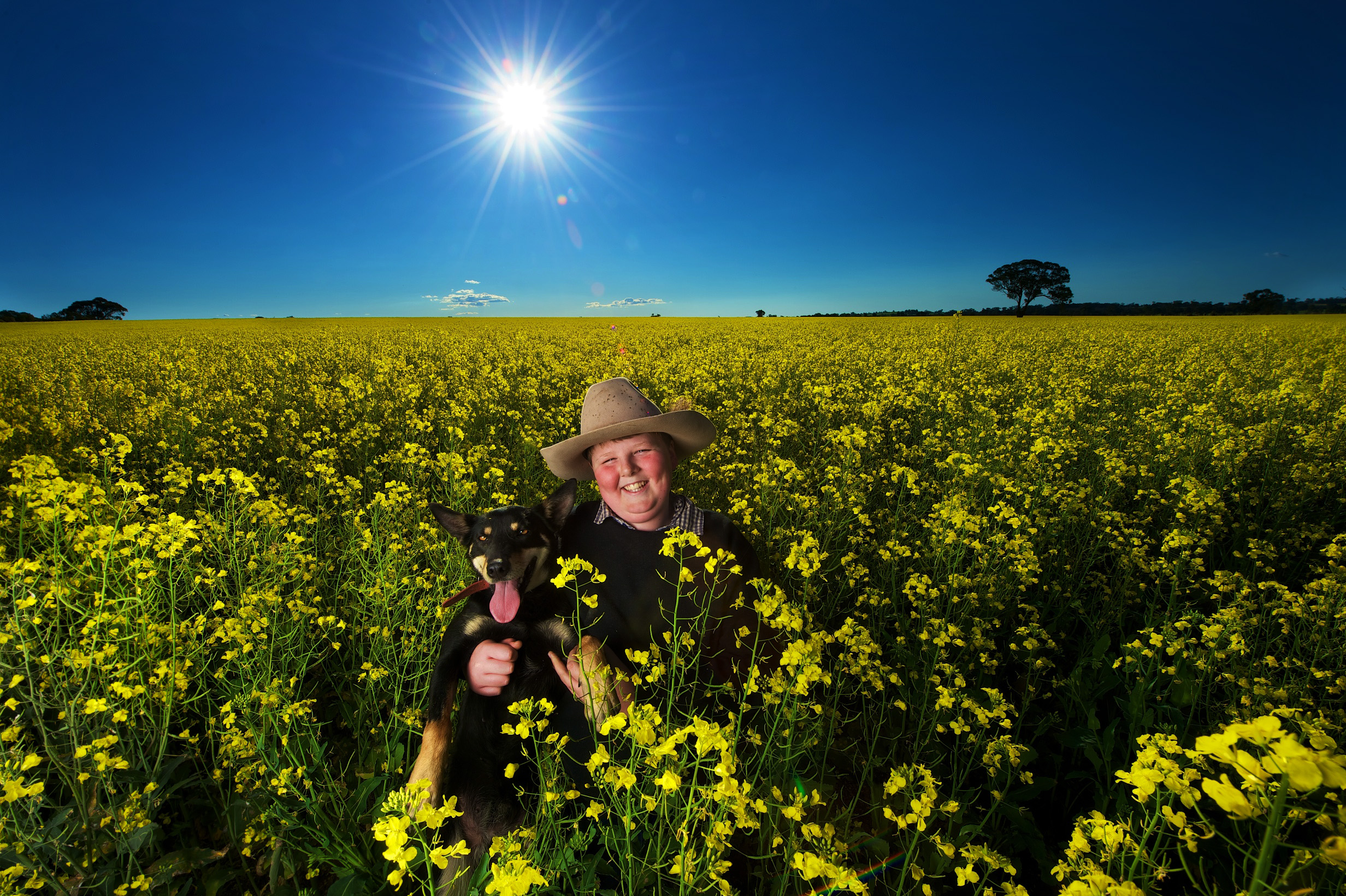 CHP_Export_91422582_HS25 We%27re for Victoria Tom Punton 13 with Zoe in  canola fields on his fami.jpg