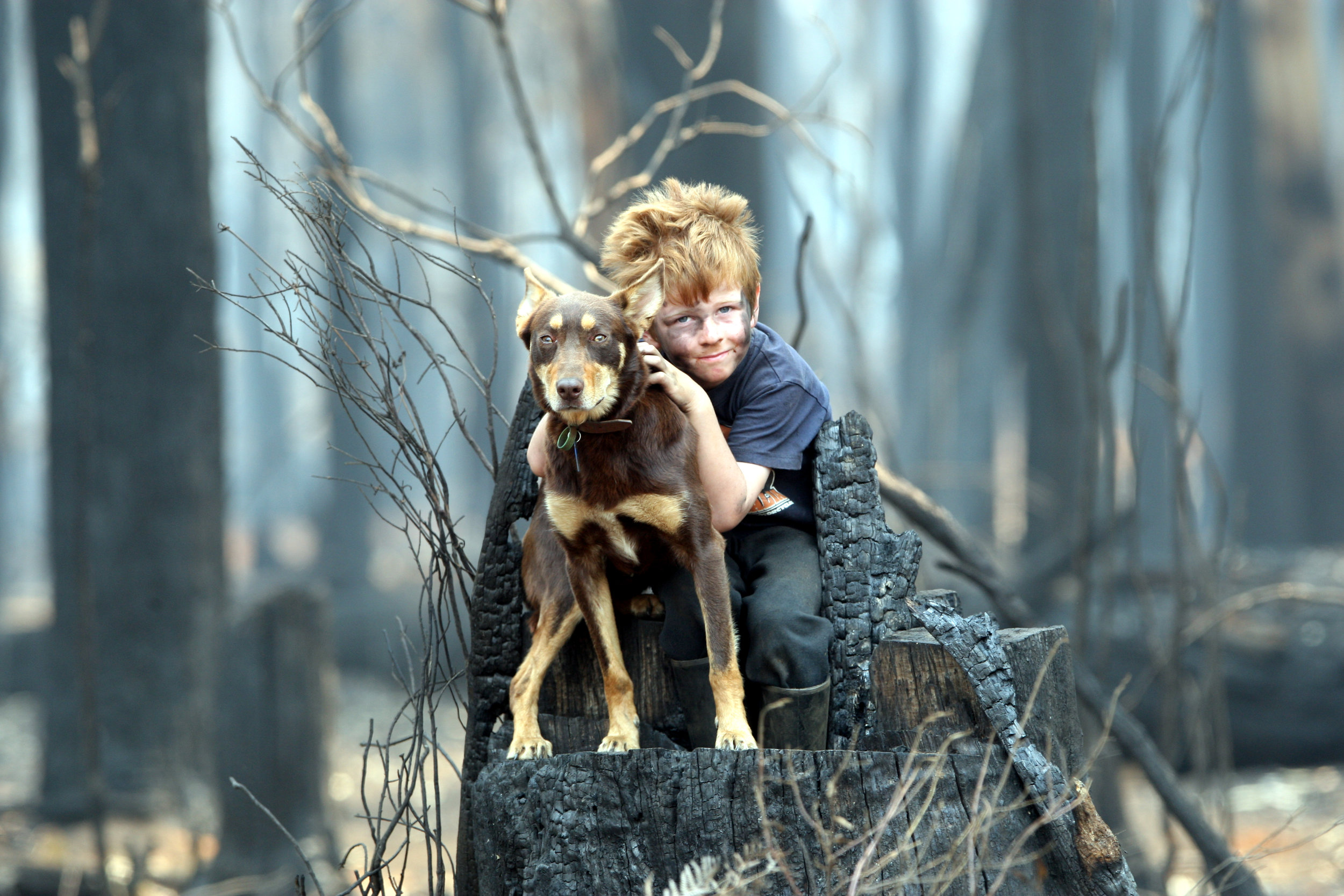 CHP_Export_47181473_Byron and Emerald Blyth with dog Duke they survived the bushfires at Kinglake..jpg