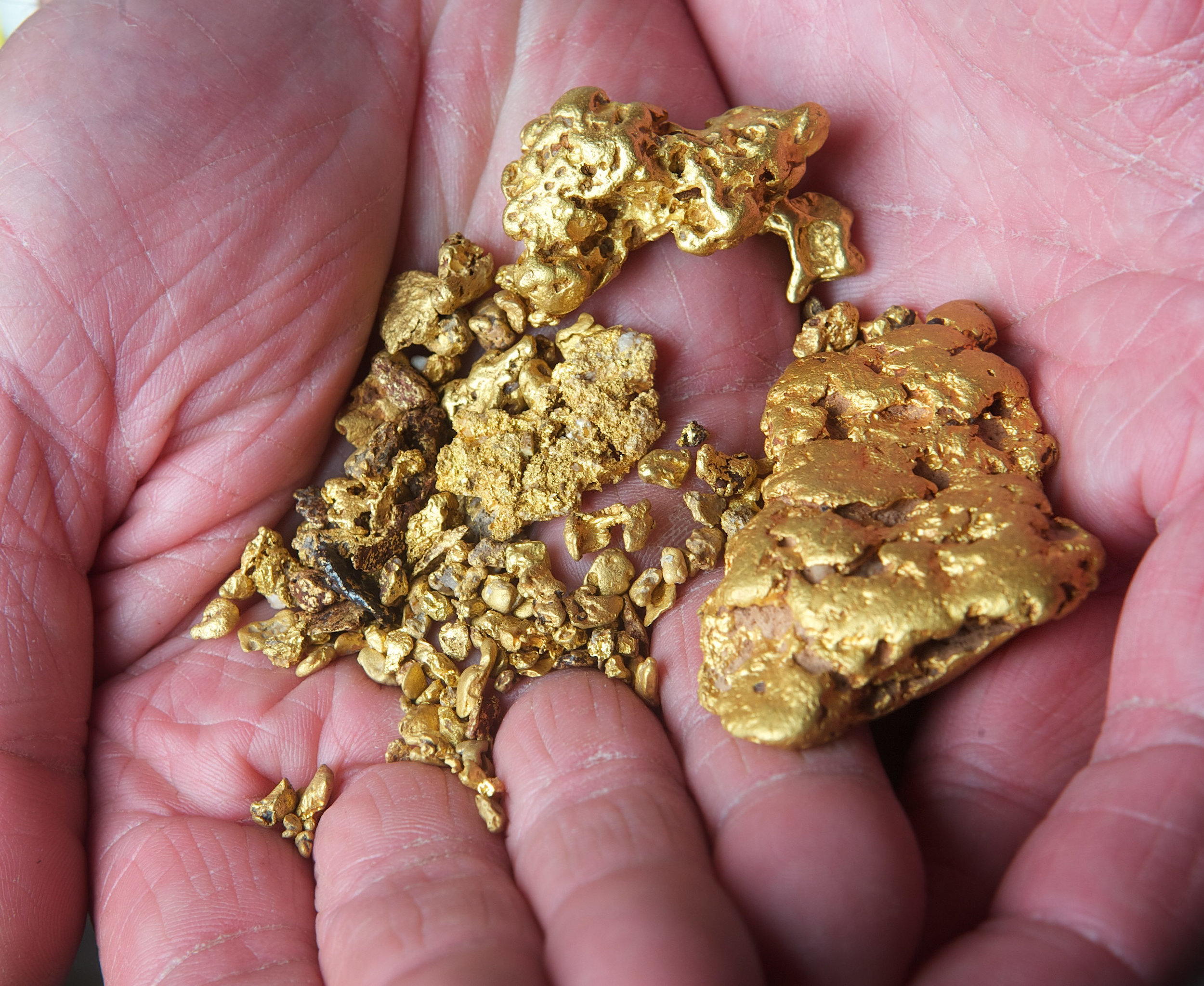 CHP_Export_3416134_Gold Fever n Over 10000 of nuggets found by Gold detectors in Central Victoria ..jpg