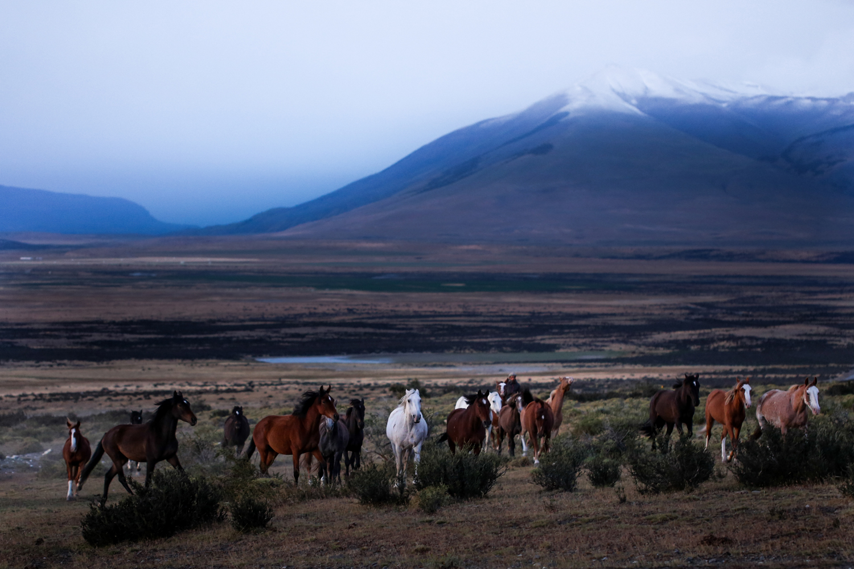 patagonia_41.jpg
