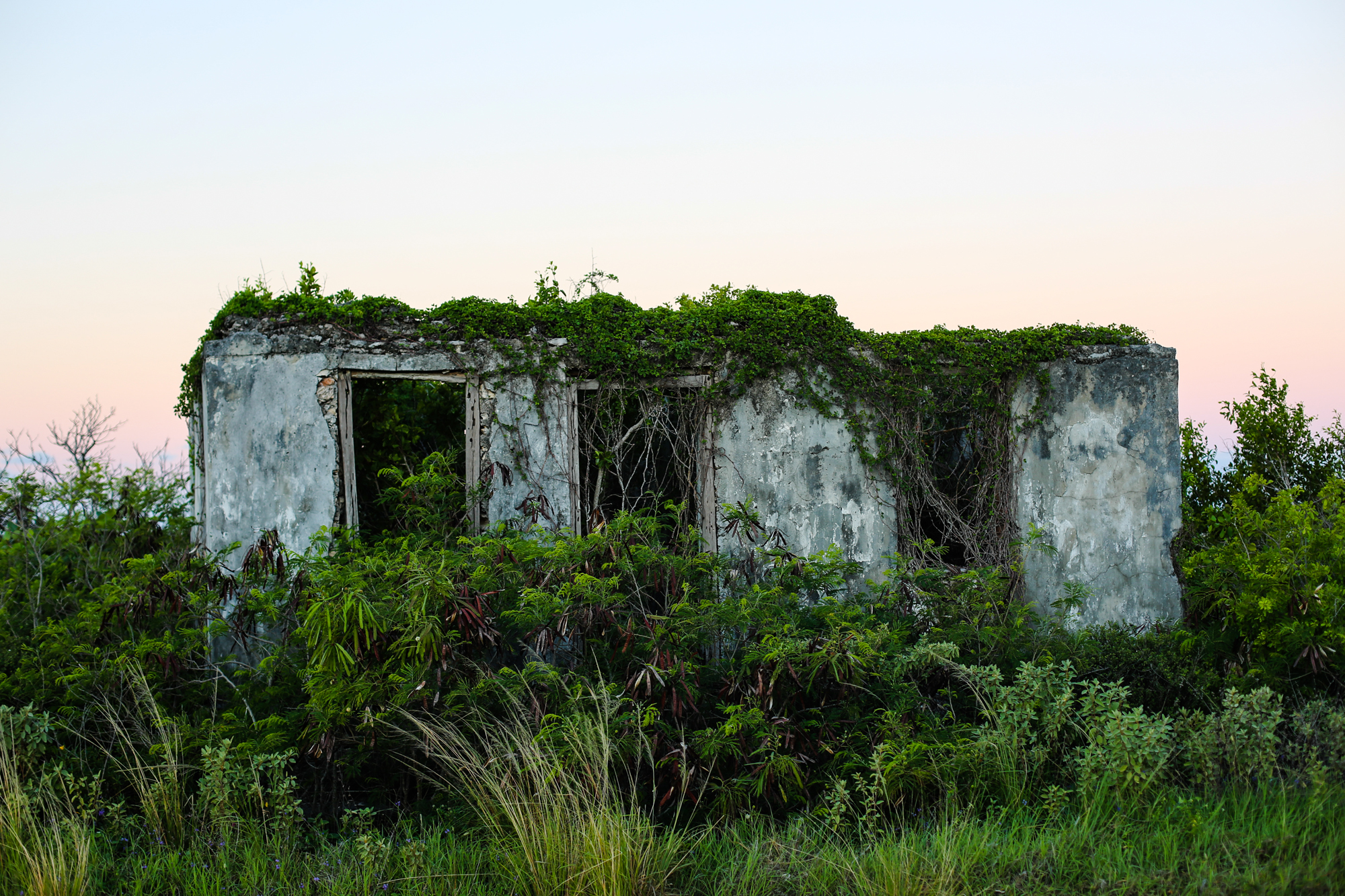 cat_island_bahamas_1.jpg