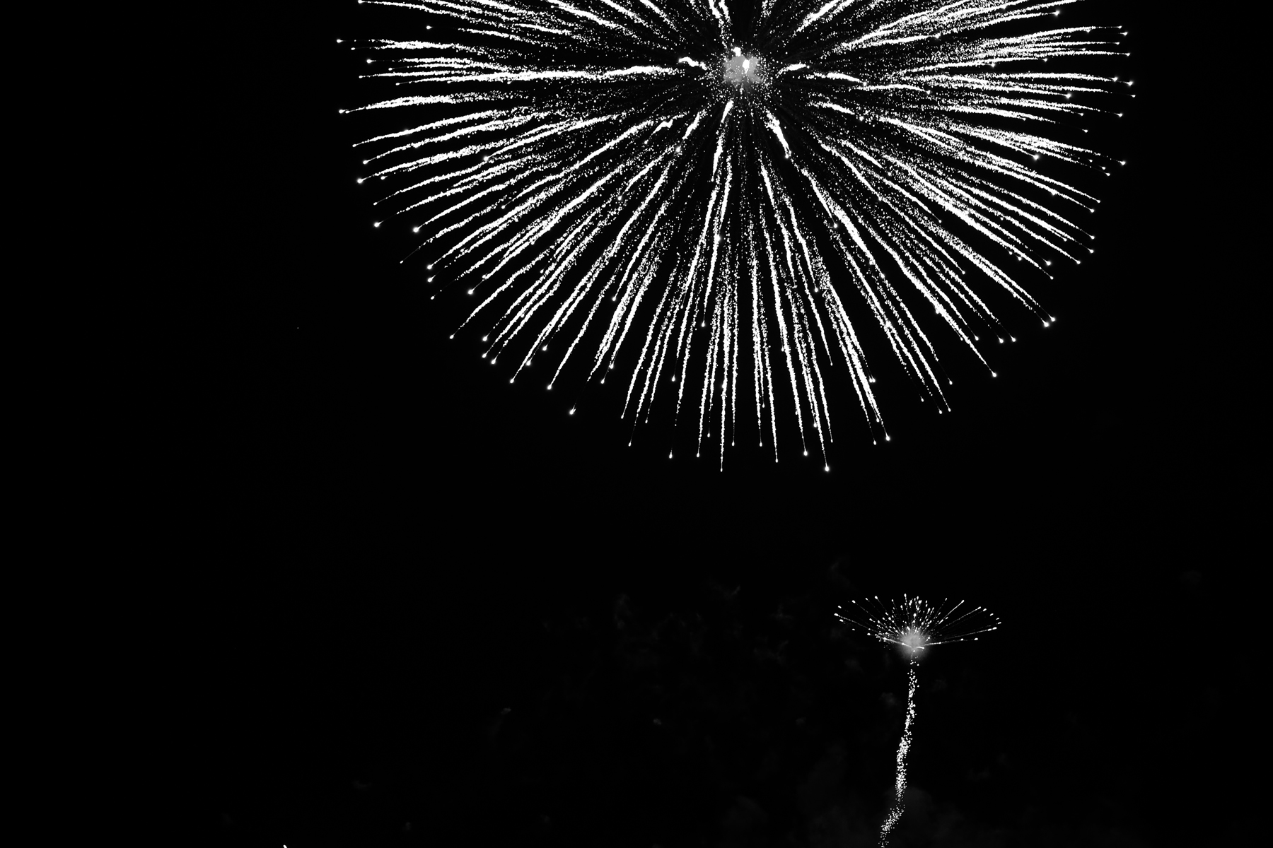 Fireworks2019_5.jpg