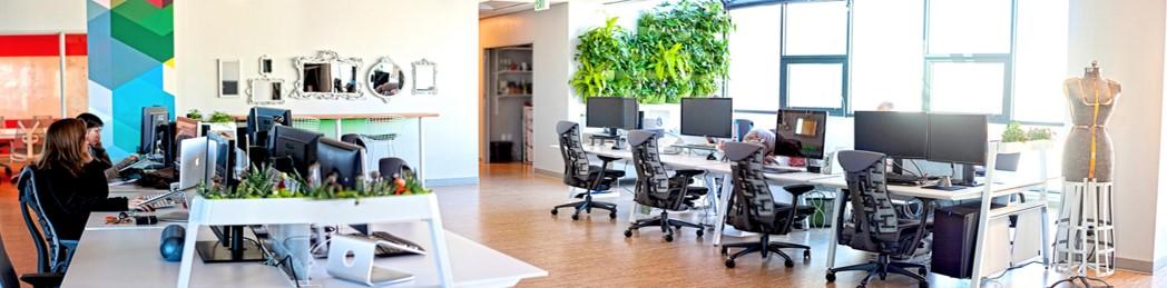 Office 360.jpg