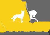 Summit-logo-small-110.png