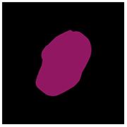 Paritita-Submark-B-Berry copy.png