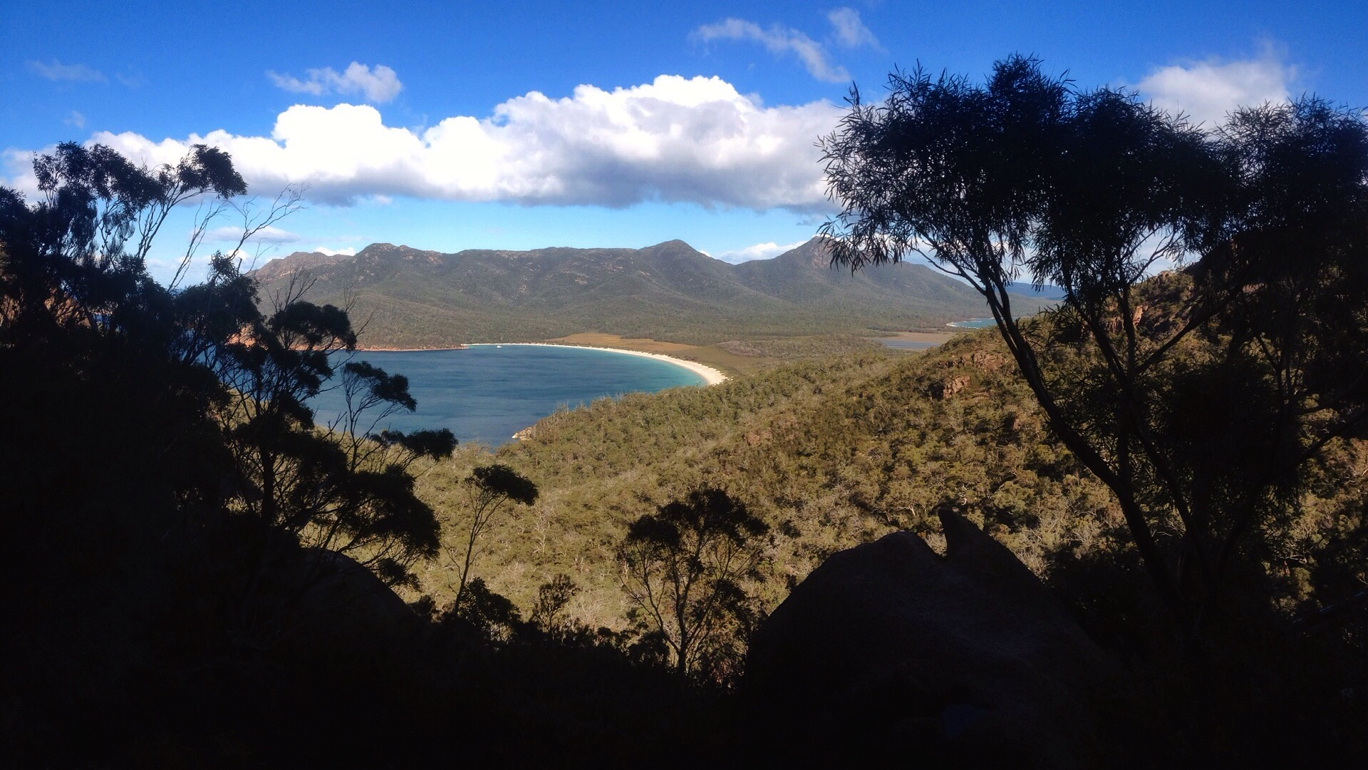 100% Tasmanian owned and operated. -