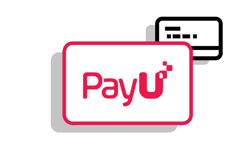 slide5-diseno.presentaciones-opciones-de-pago.png