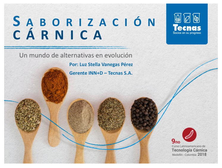 Copy of Presentación Tecnas