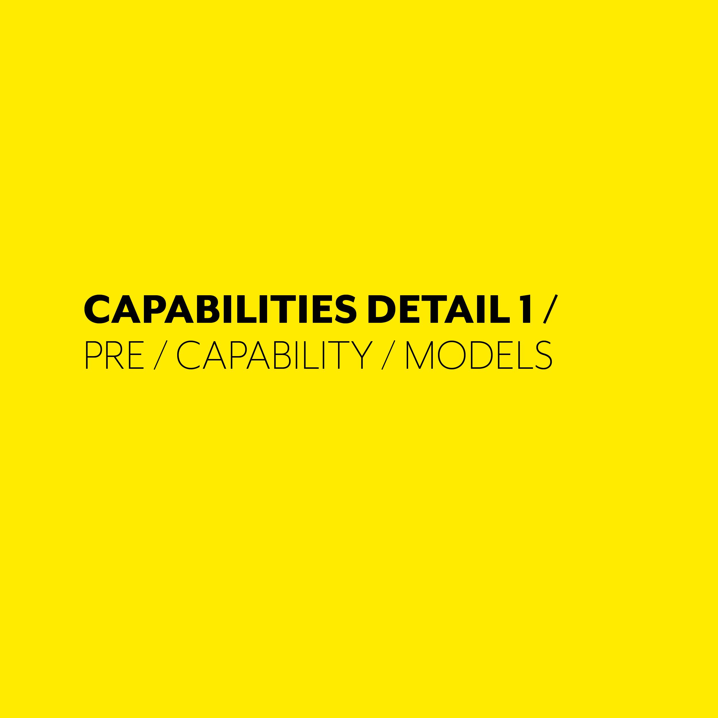 CAPABILITIES DETAIL 1.jpg