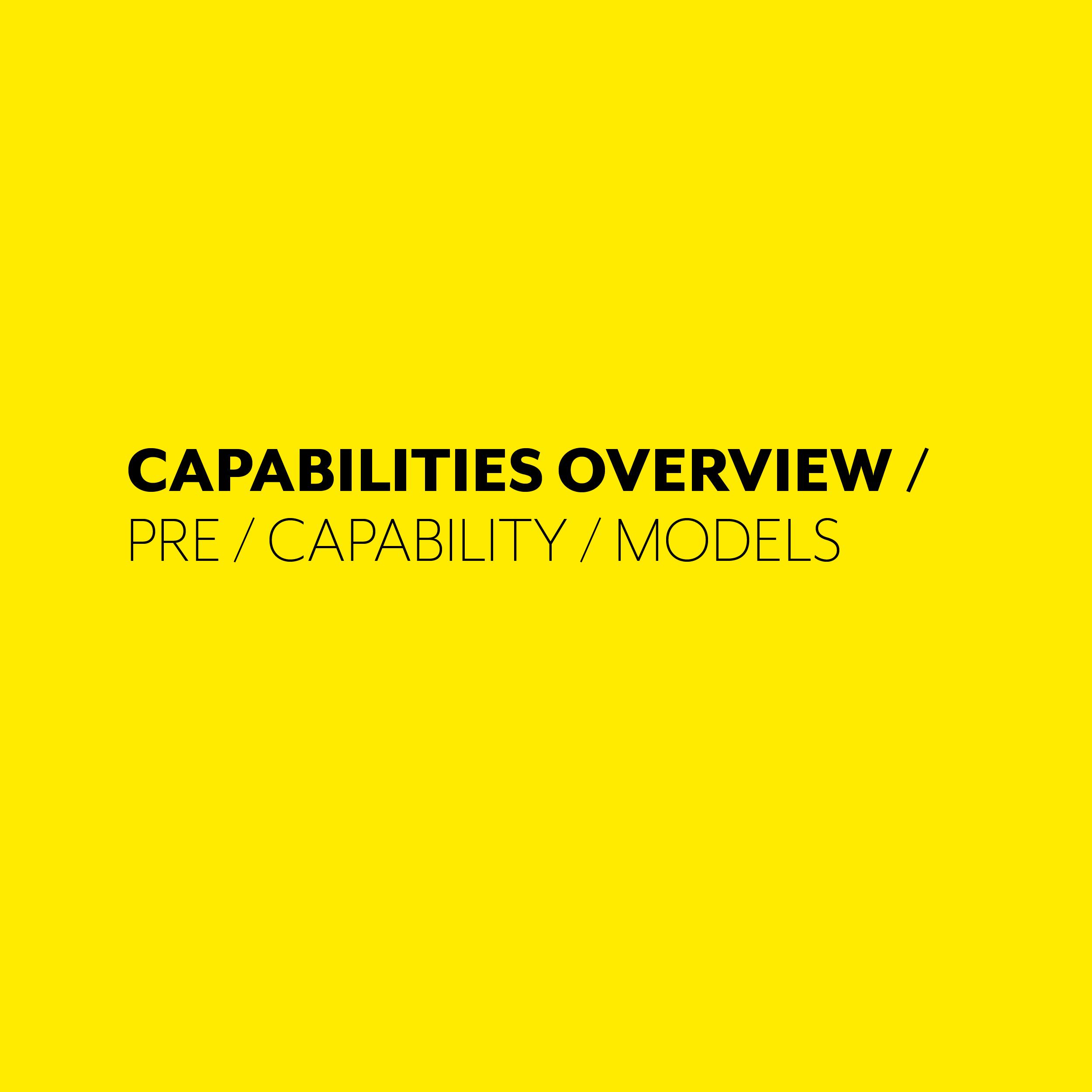 CAPABILITIES OVERVIEW MODEL.jpg