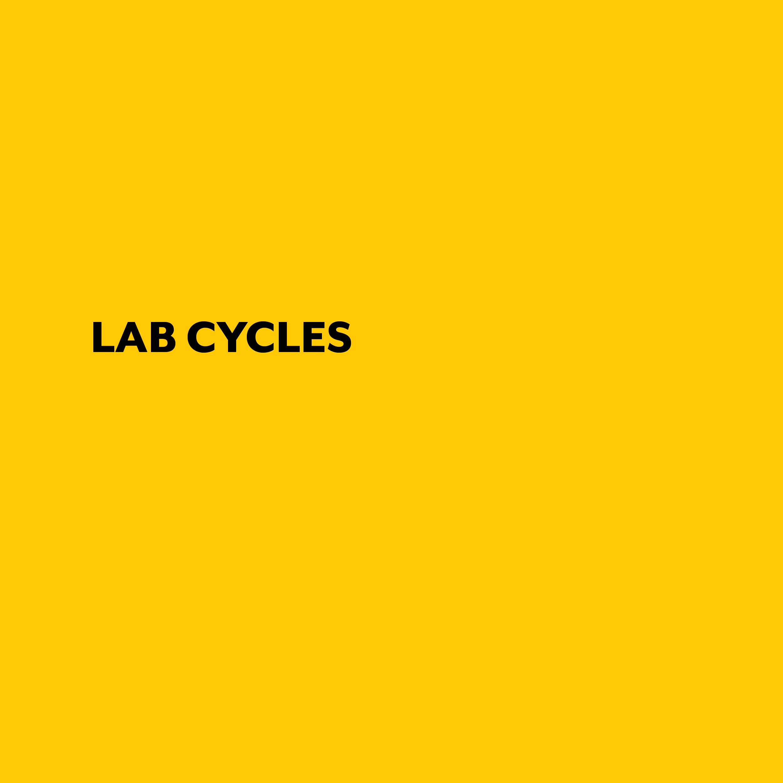 LAB CYCLES.jpg