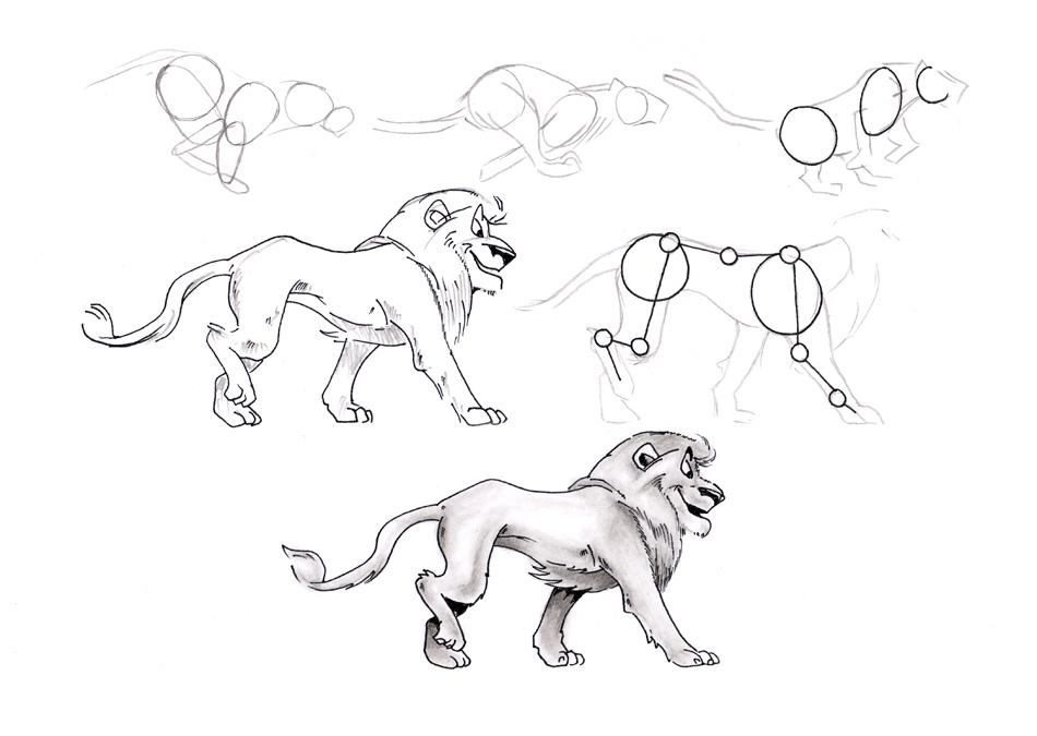 How to draw a loin.jpg