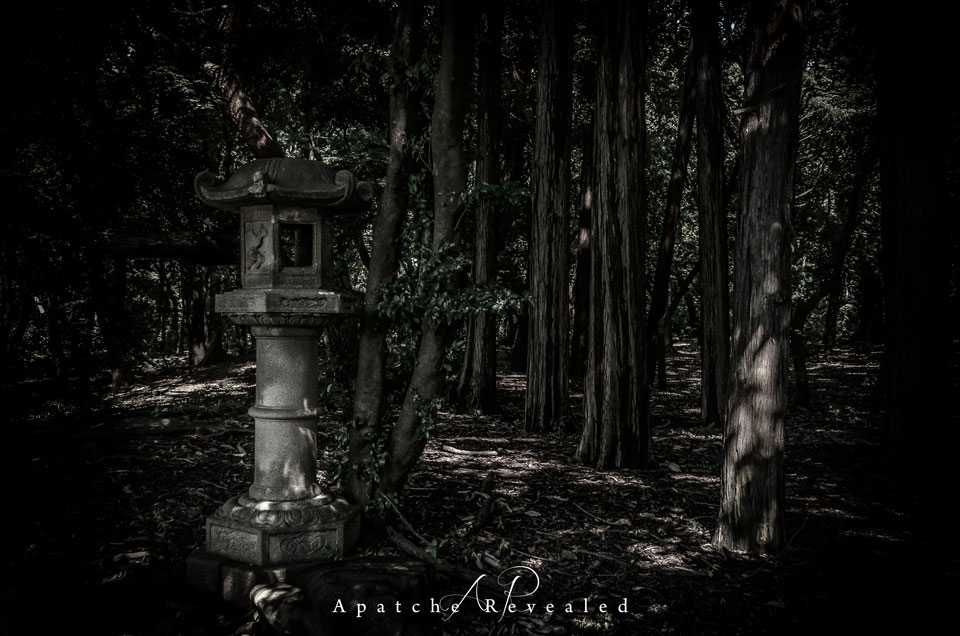 toyko-garden.jpg