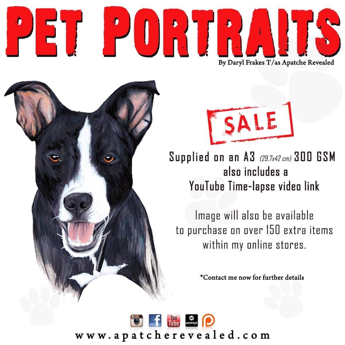 Pet Portraits add
