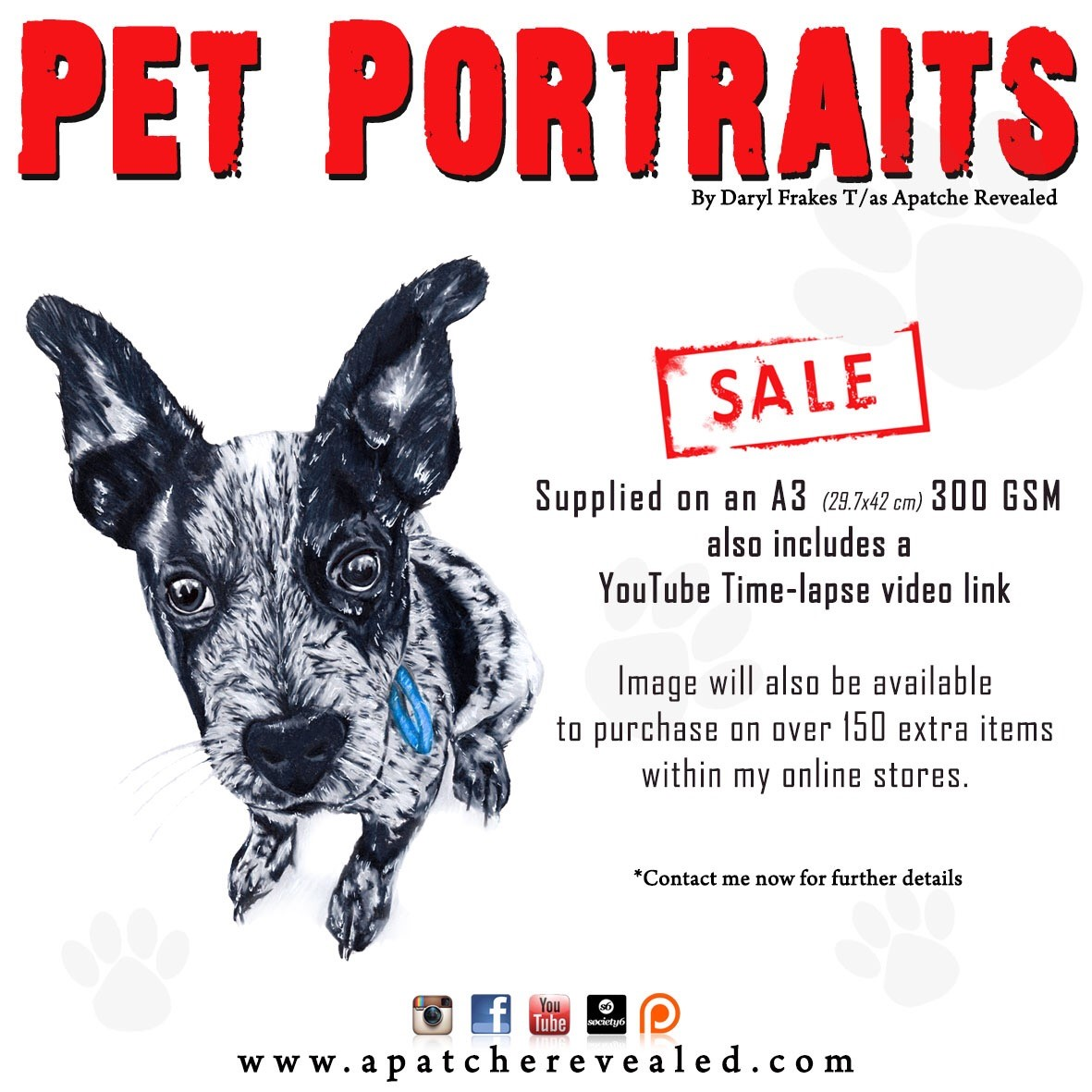Pet Portrait add