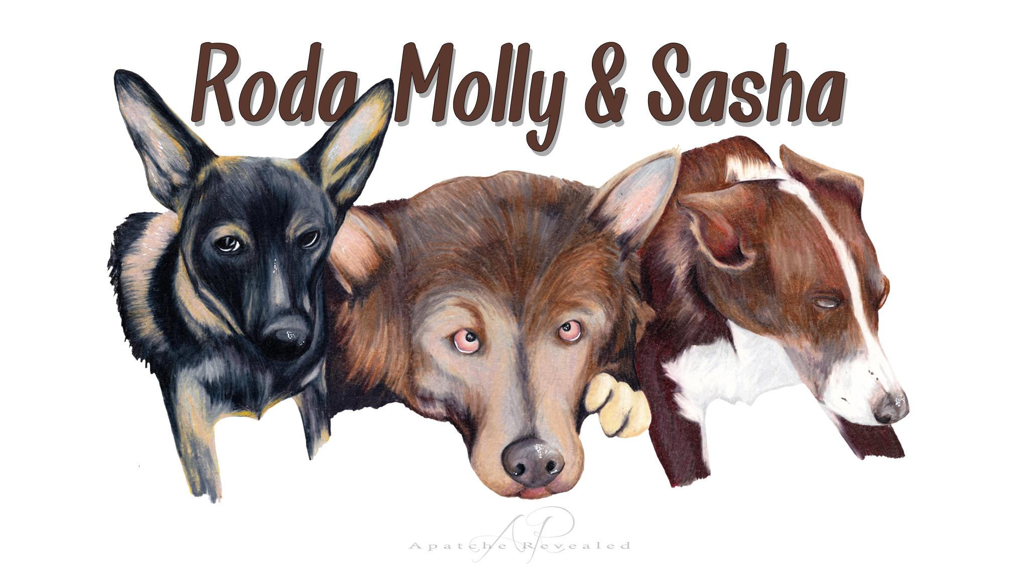Roda, Molly & Sasha