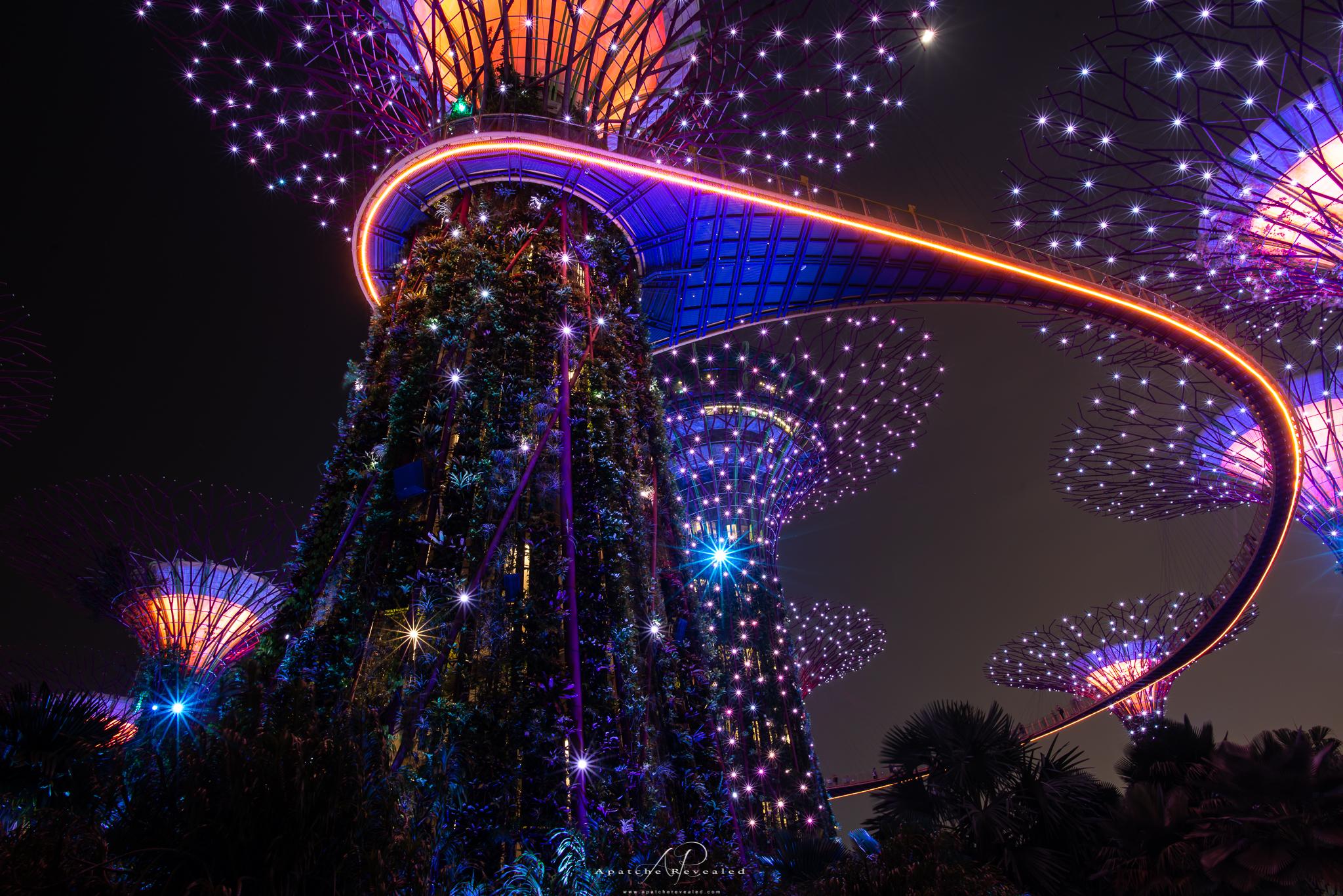 Singapore gardens-2.jpg