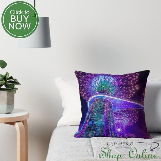 Singapore-pillows.JPG