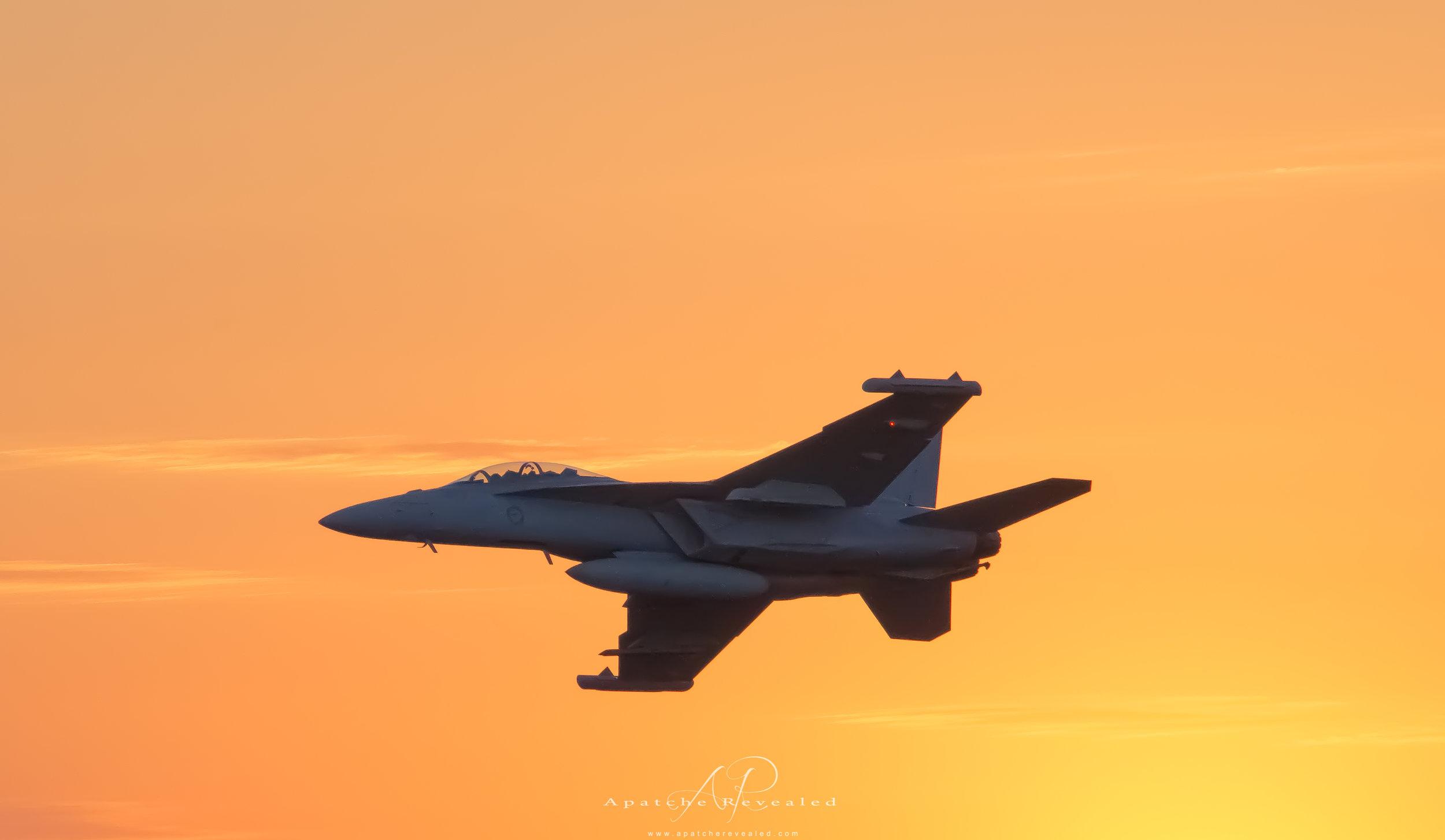 F11 Hornet