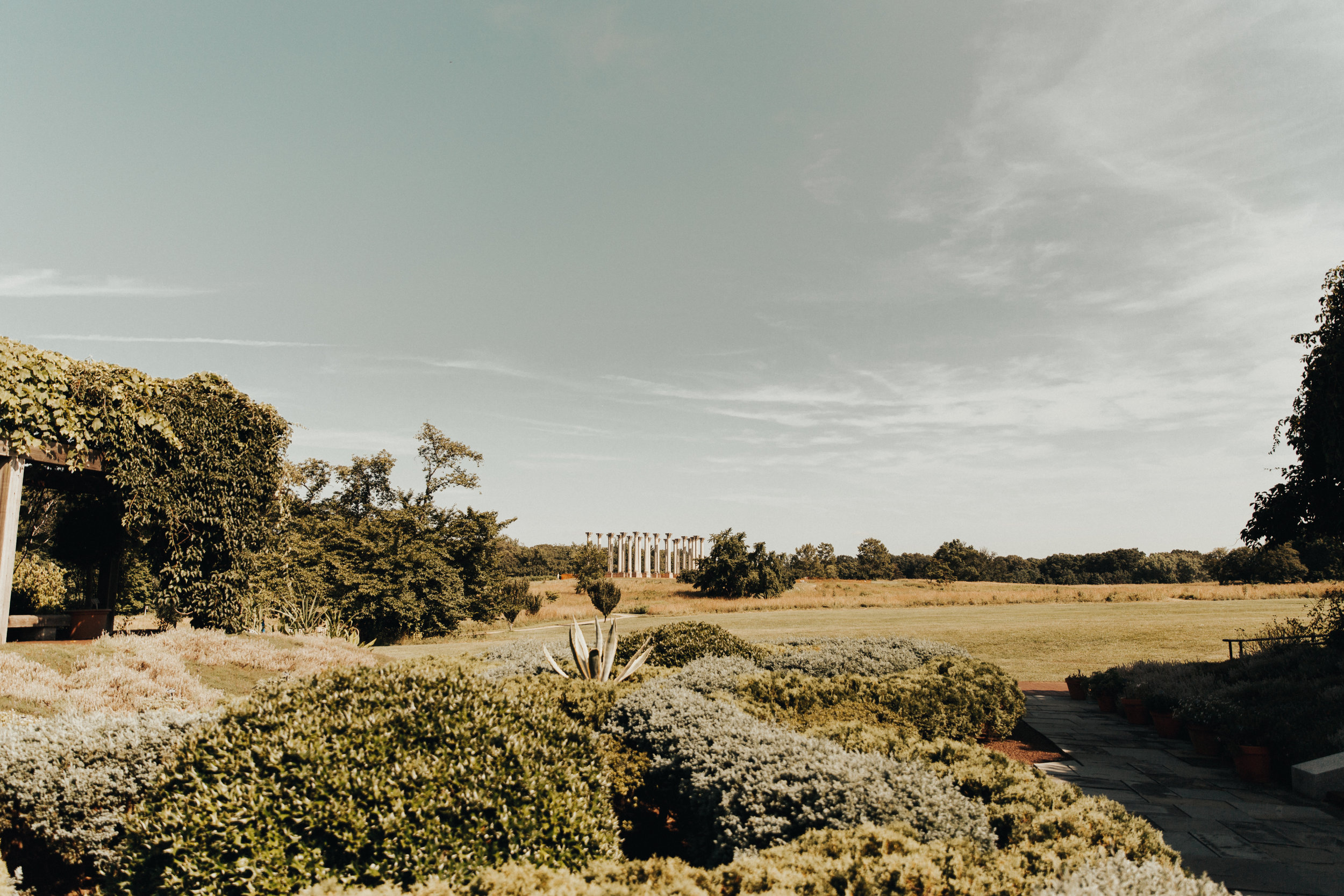 the US National Arboretum