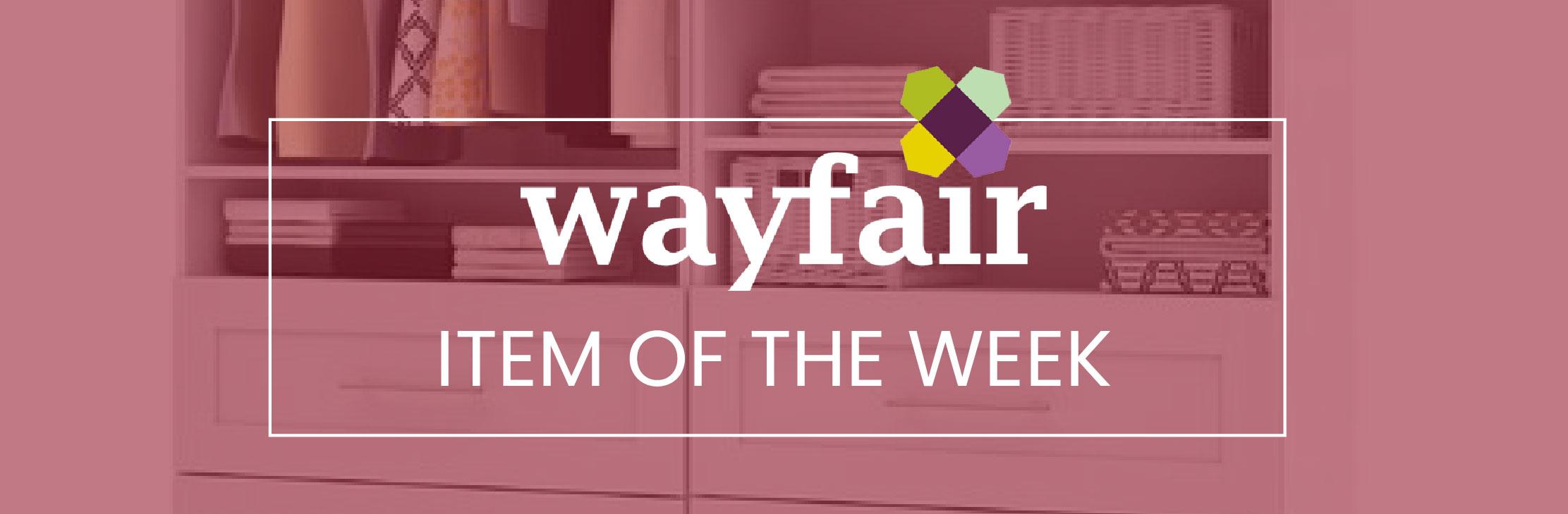 Wayfair-item-of-the-week-closet-organizer