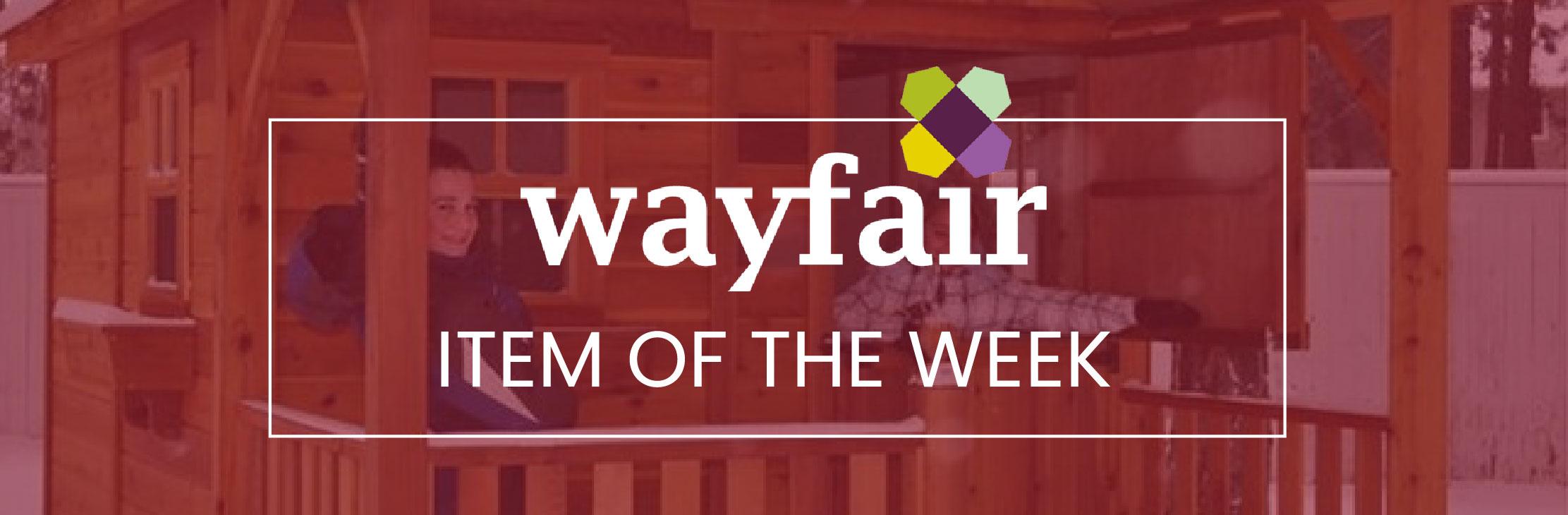 Wayfairitem-of-the-week-super-shed