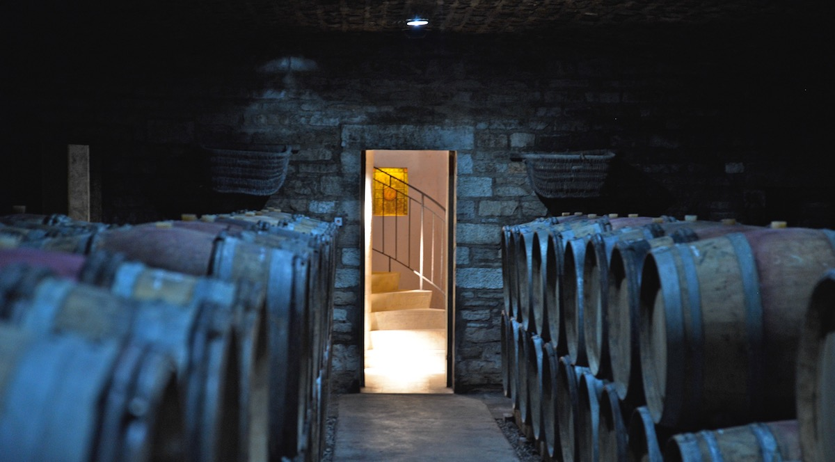 What is it about Burgundy? -