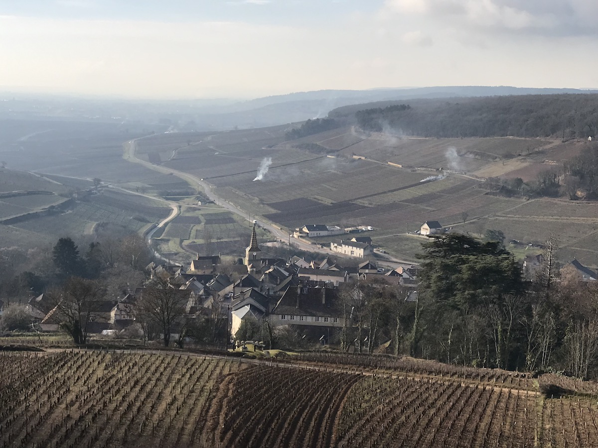 Pernand Vergelesses and the vineyard Sous Fretille in the foreground
