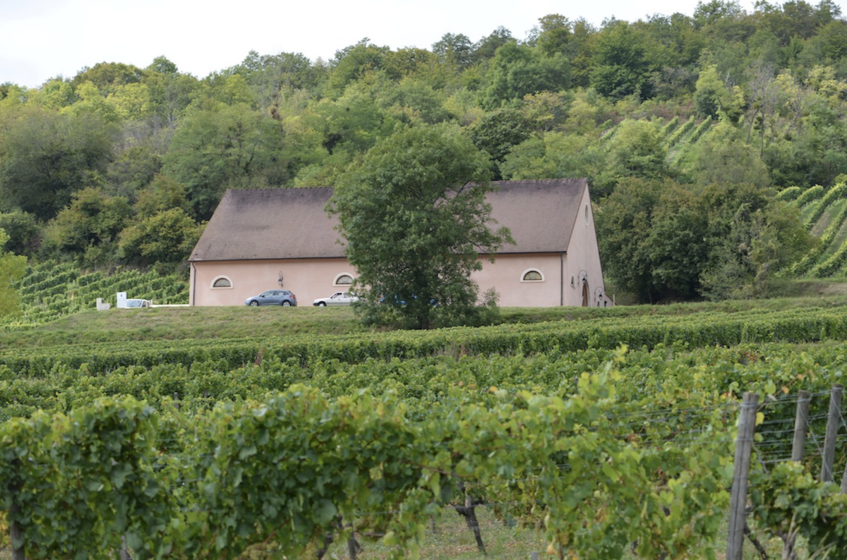 The Pink WInery in Curtil Vergy, Hautes-Cotes