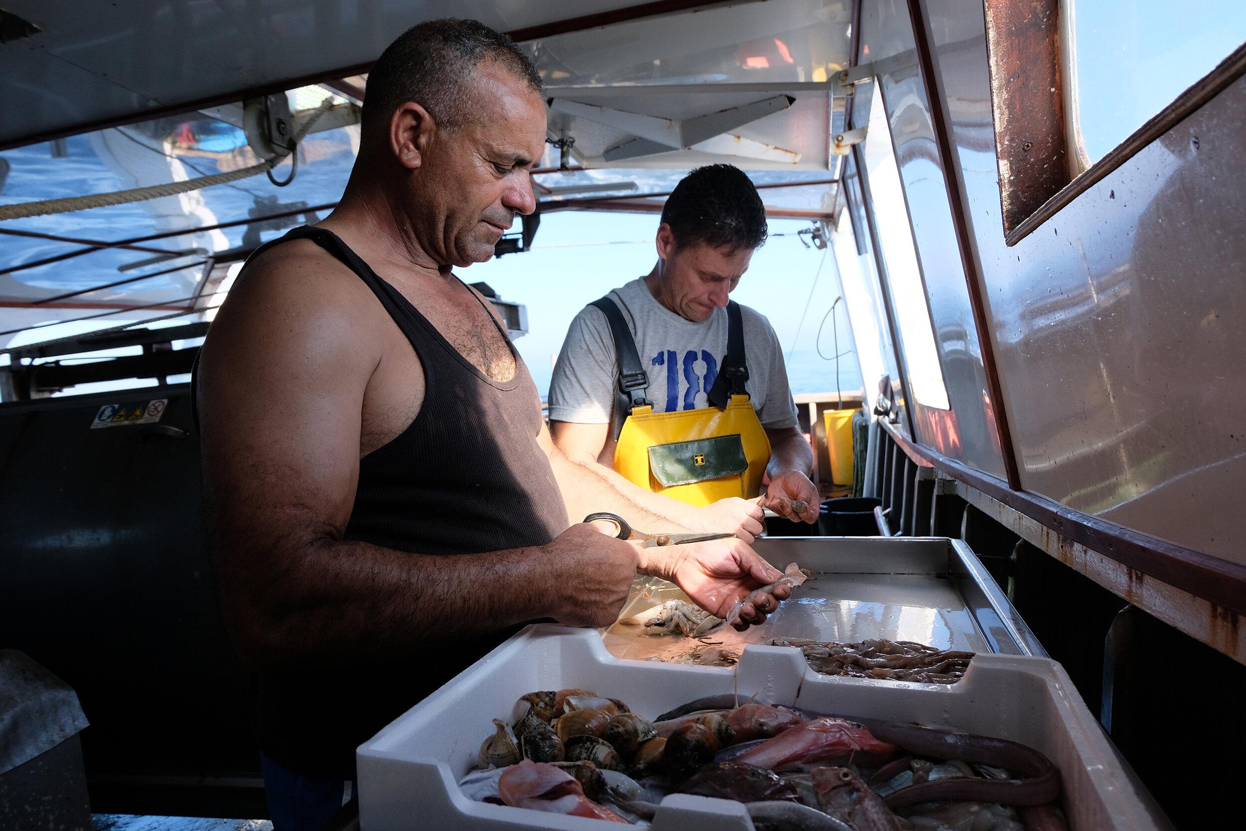 Una giornata su un peschereccio -