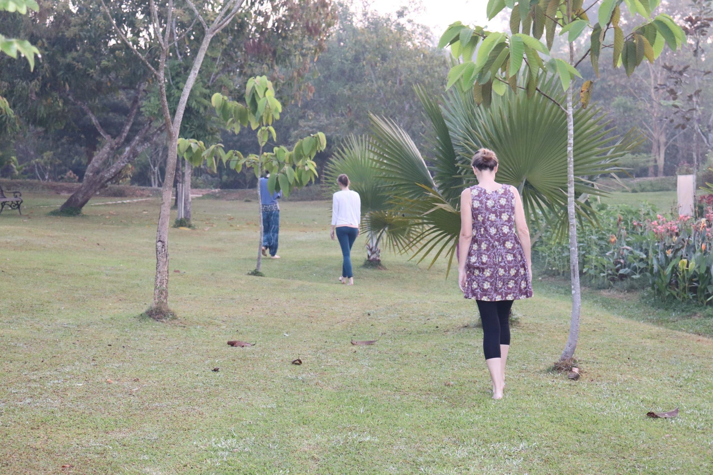 walking meditation.jpg