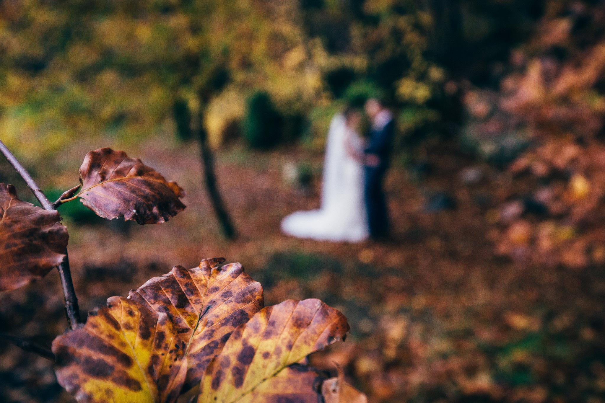 Norway+wedding+photographer+elopement+pre+wedding+Rogaland+bryllupsfotograf+Casey+Arneson-218.jpg