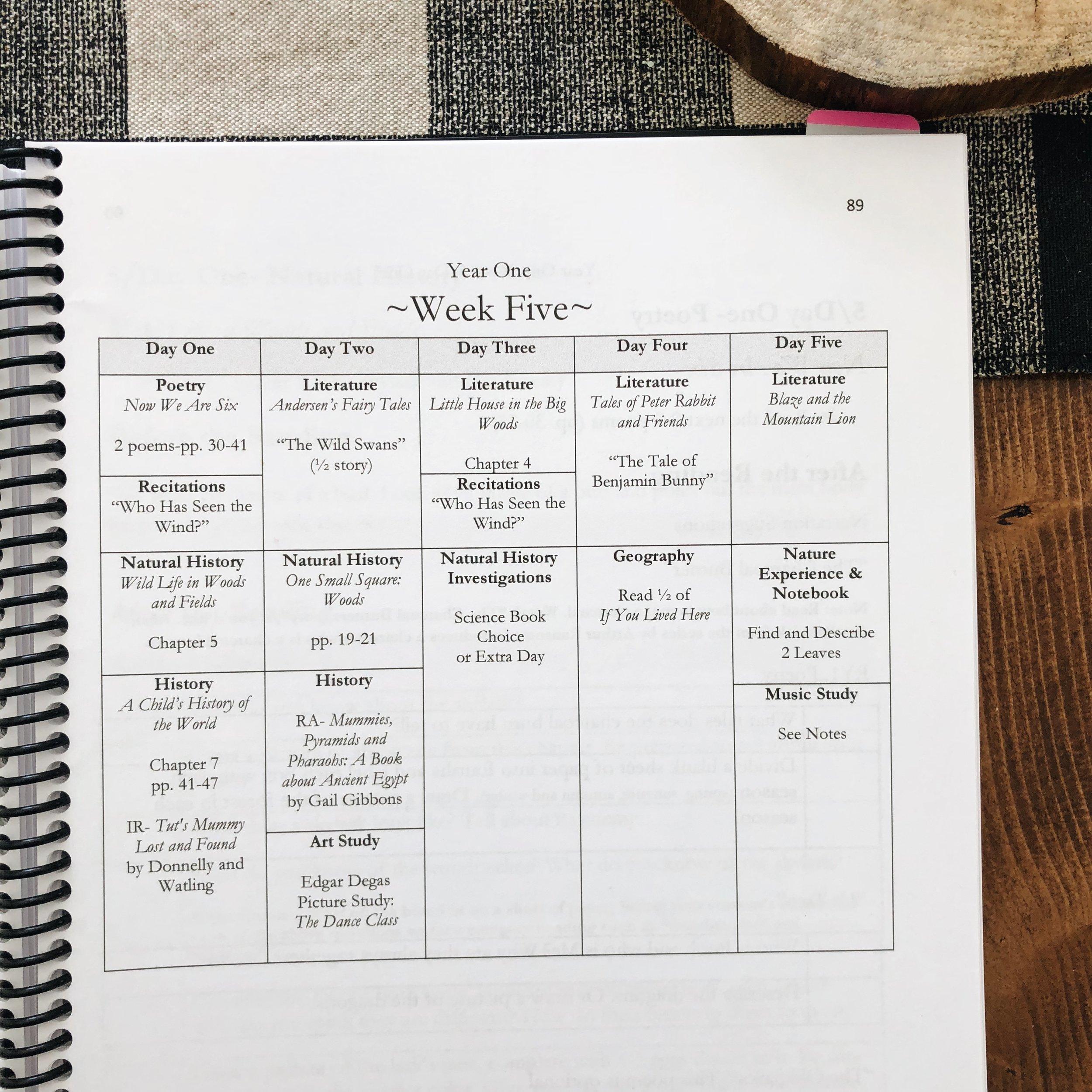 A Week of First Grade Lessons in a Charlotte Mason Homeschool | on theschoolnest.com | #homeschool #charlottemason