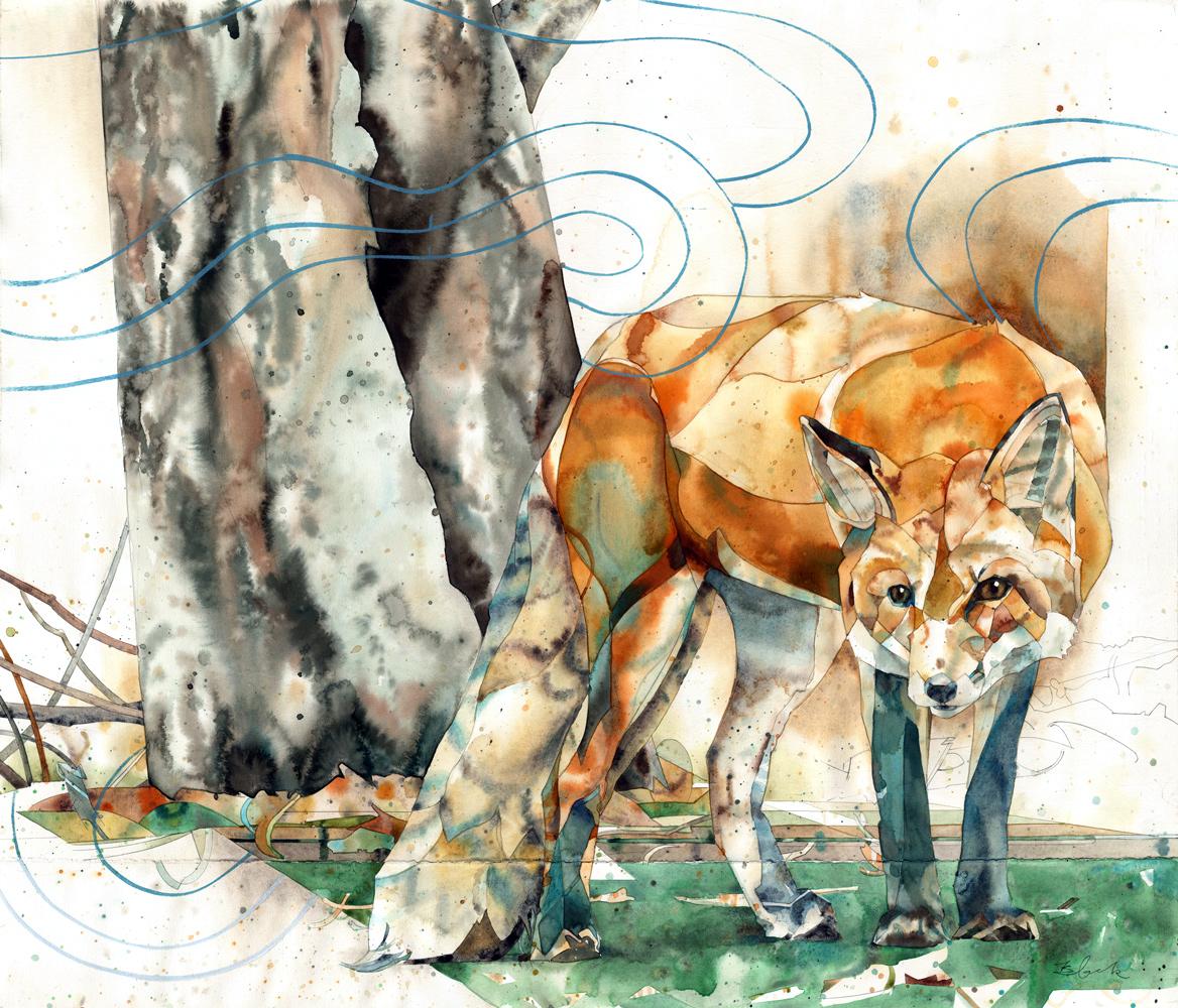 fox5vape-w.jpg