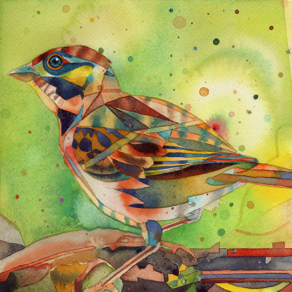 """chirp376 smarty 7x8"""""""