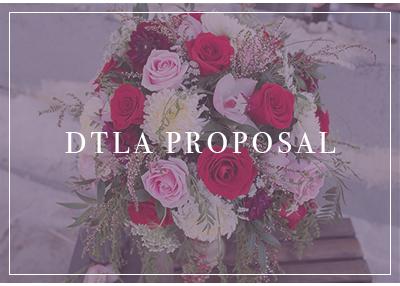 gallery_title_dtla-proposal.jpg