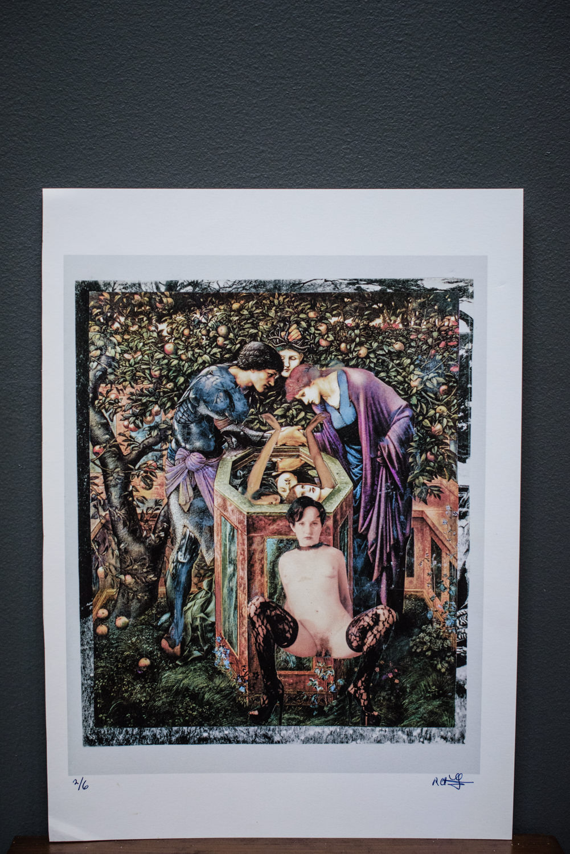 Rosalie-Frankel-Mixed-Media-Collage-Art-Prints-NY-Viejques-4205.jpg
