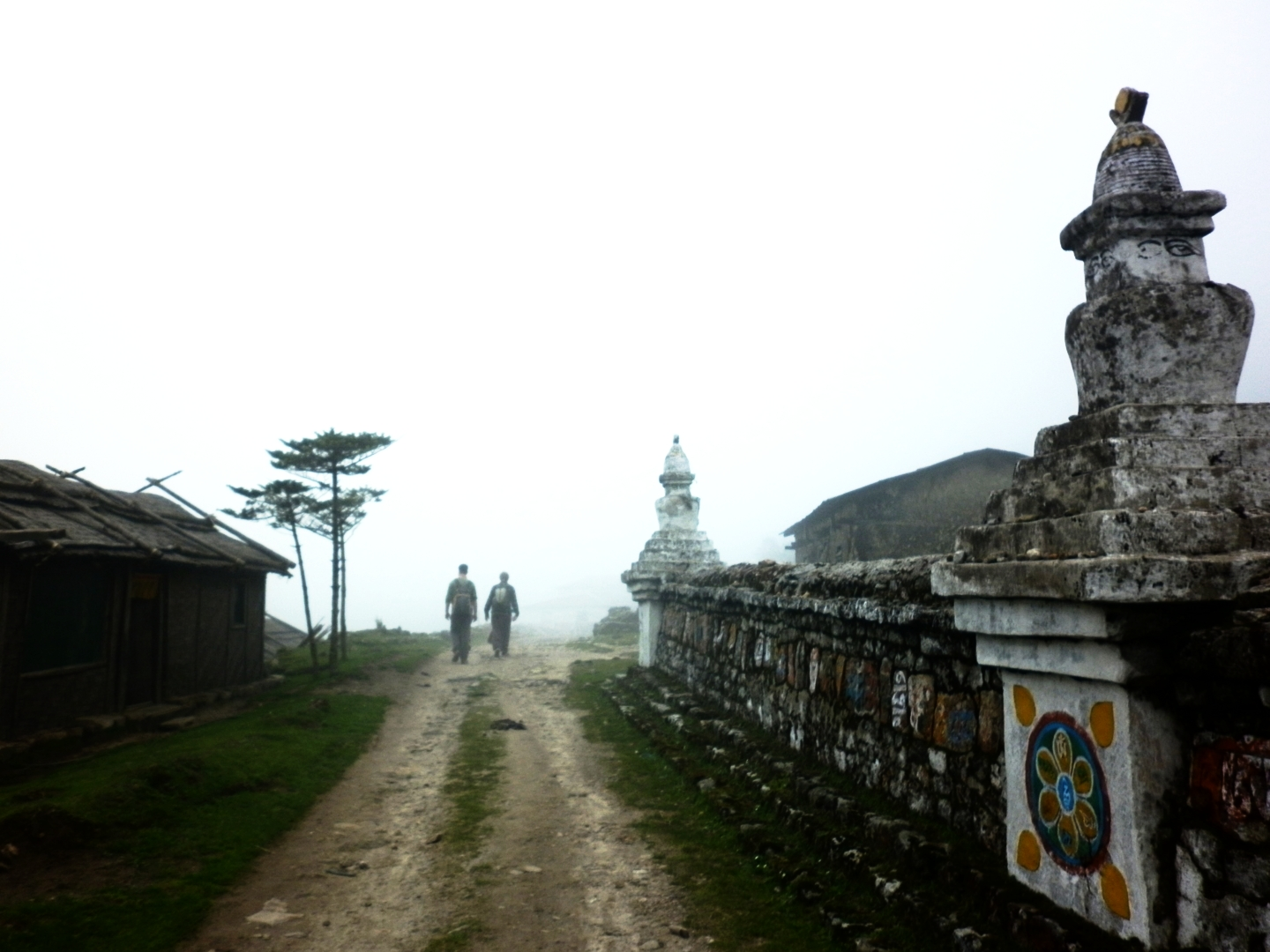 What has your Paths to Pachamama been like?