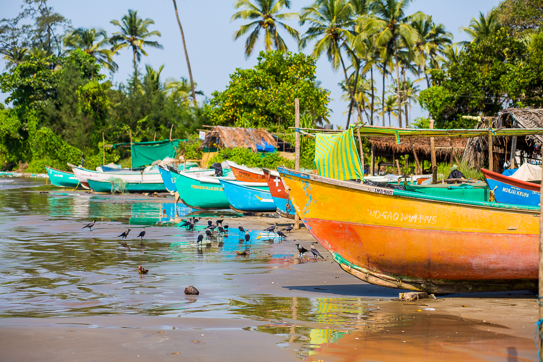 Goa-India-481.jpg