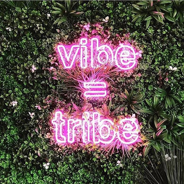 Your vibe attracts your tribe ✨