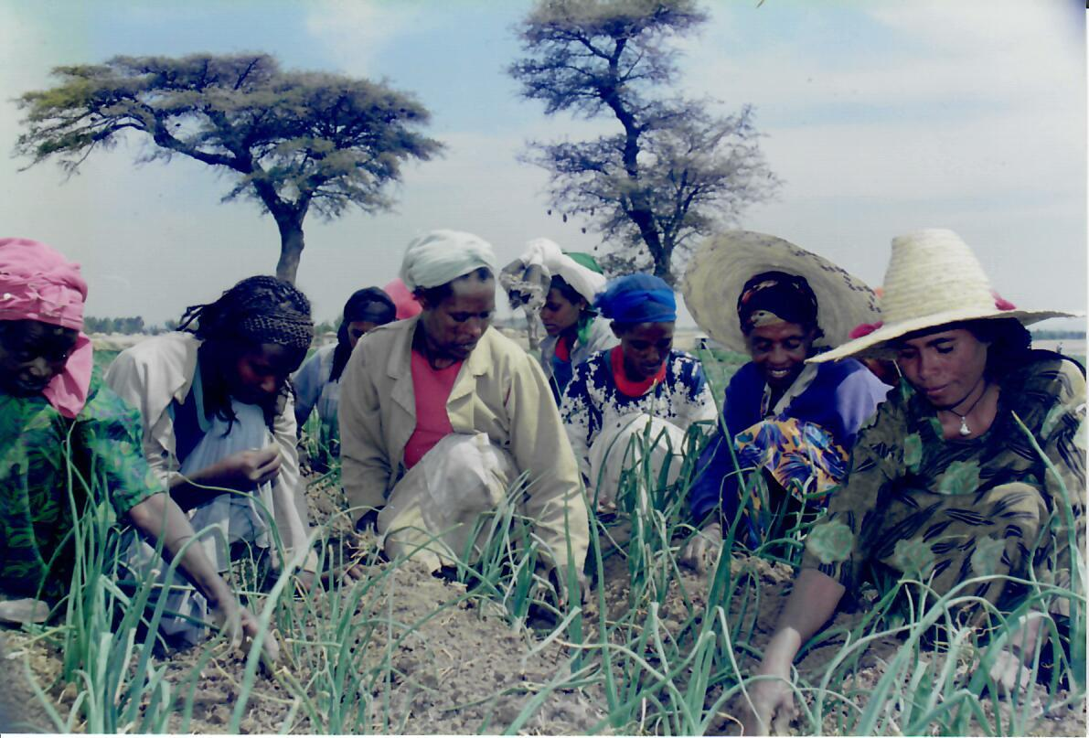 Ethiopia 1998 (Photo by Tom Haskell)