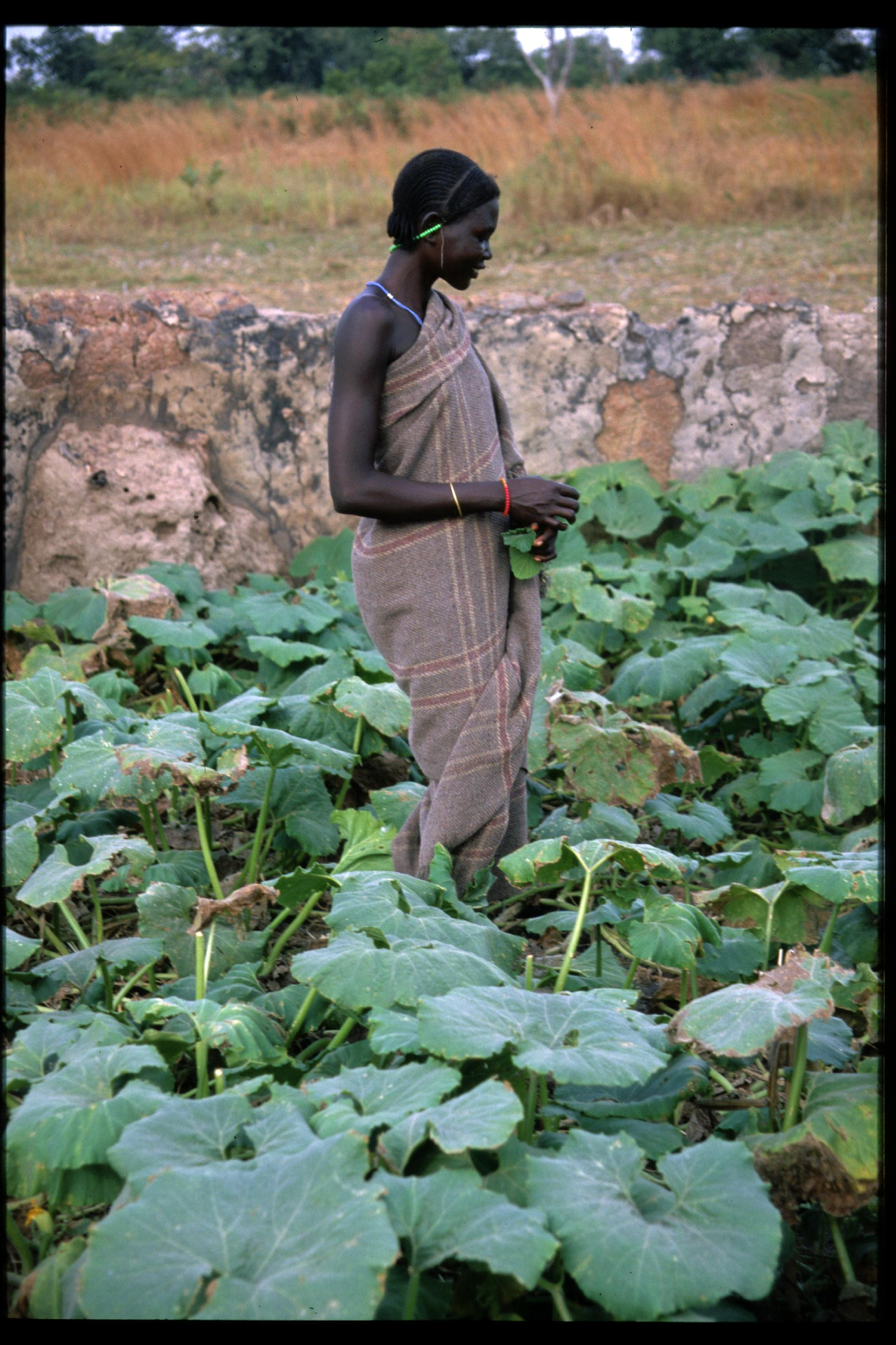 Sudan 1996 (Photo by Tom Haskell)