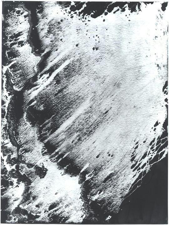 """Black and White Sweep"", Black & White Series."