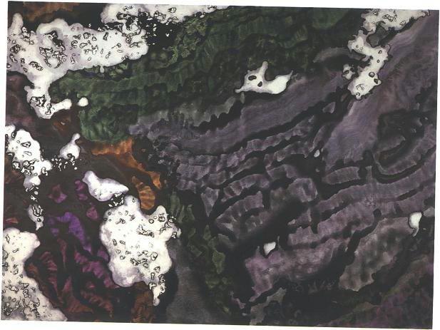 """""""Glacier Slope"""", Glacier Garden Series."""