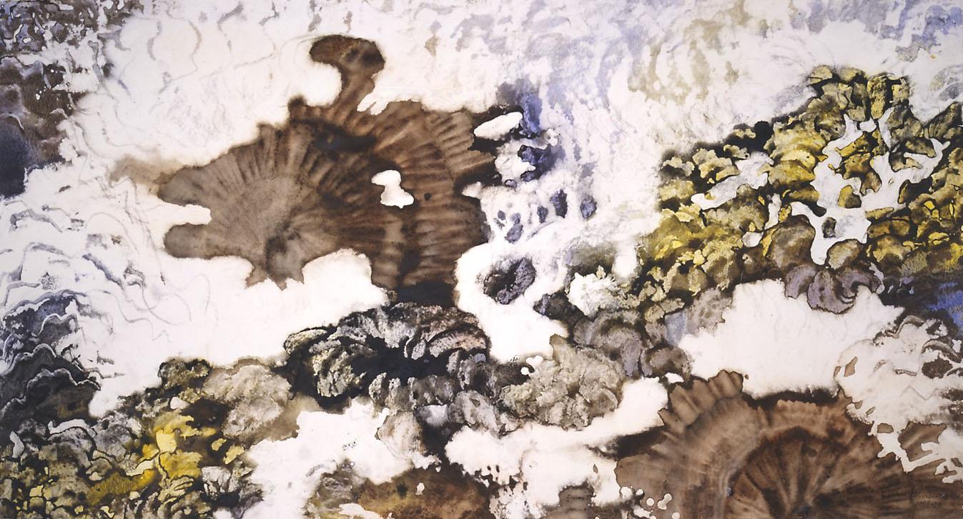 """""""Snow Creek"""", Glacier Garden Series."""