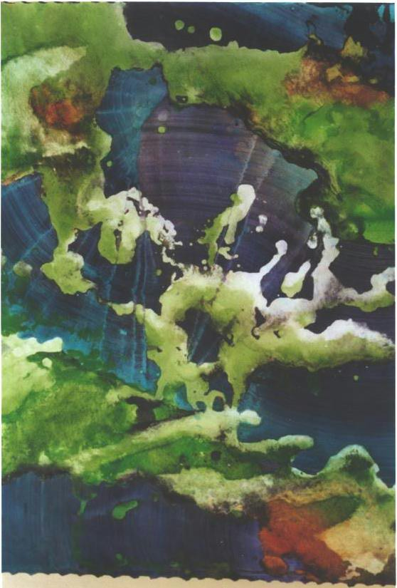 """Hanging Moss III"", Forest Moss Series."