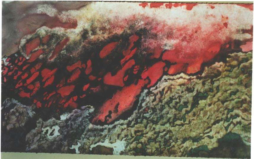 """""""Forest Fire"""" 2003, Forest Fire Series, acrylic on canvas, 10 x 20 feet (305 x 610 cm)."""