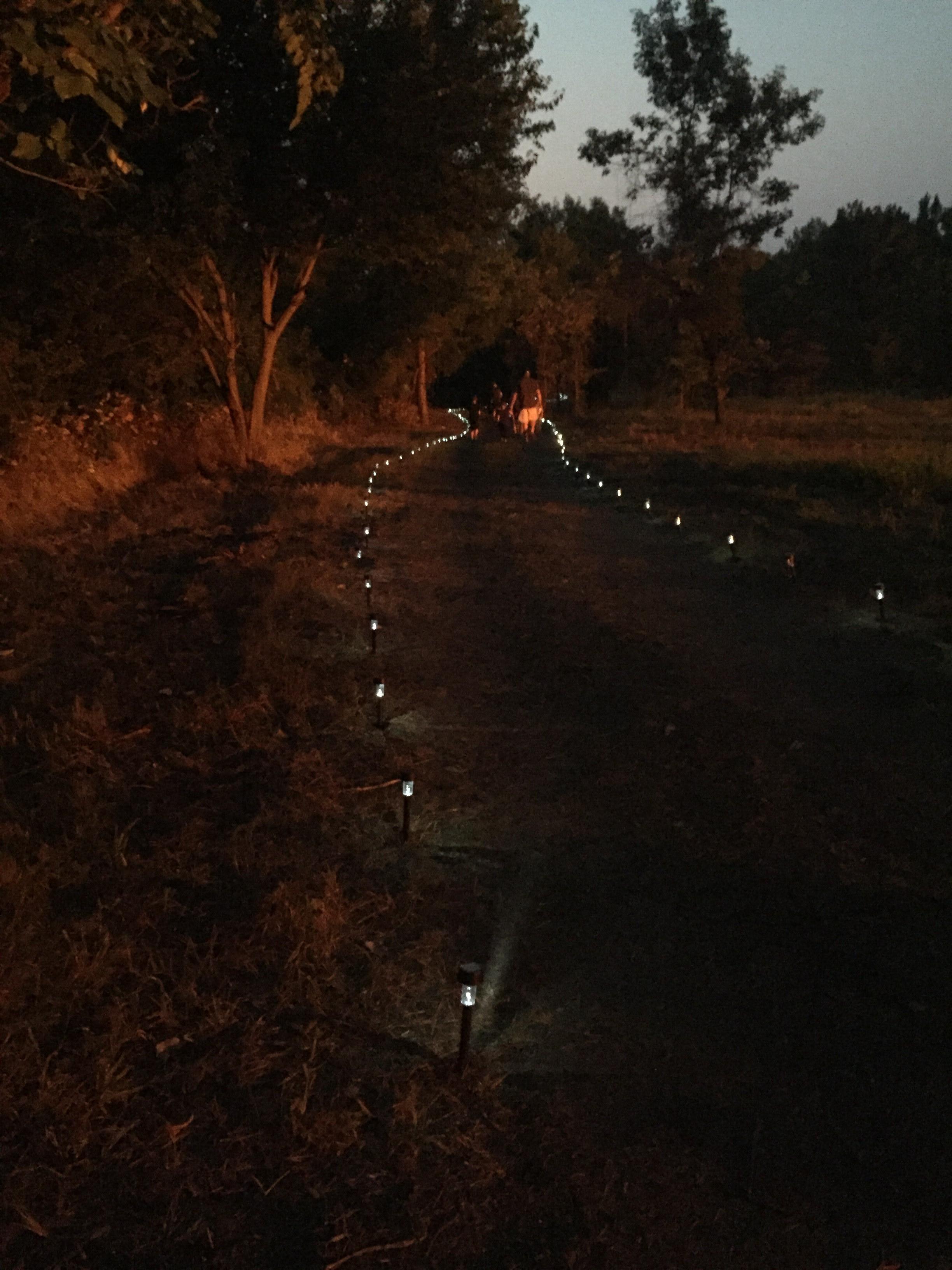 Path Lighting.jpg