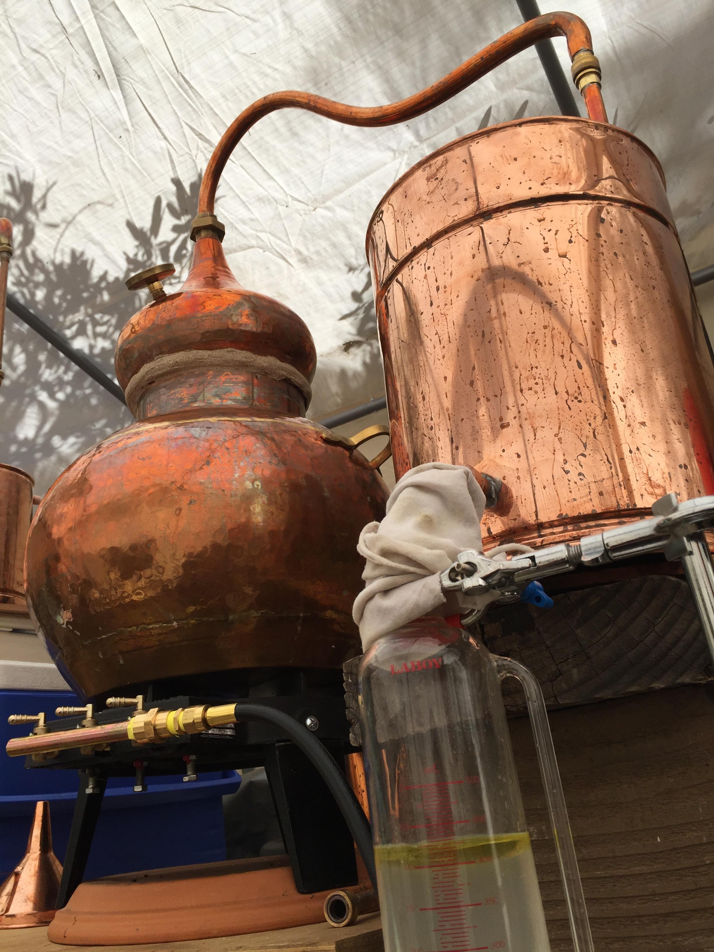 Copper Alembic Still.JPG