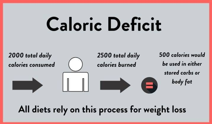 A calorie deficit will lead to weight loss